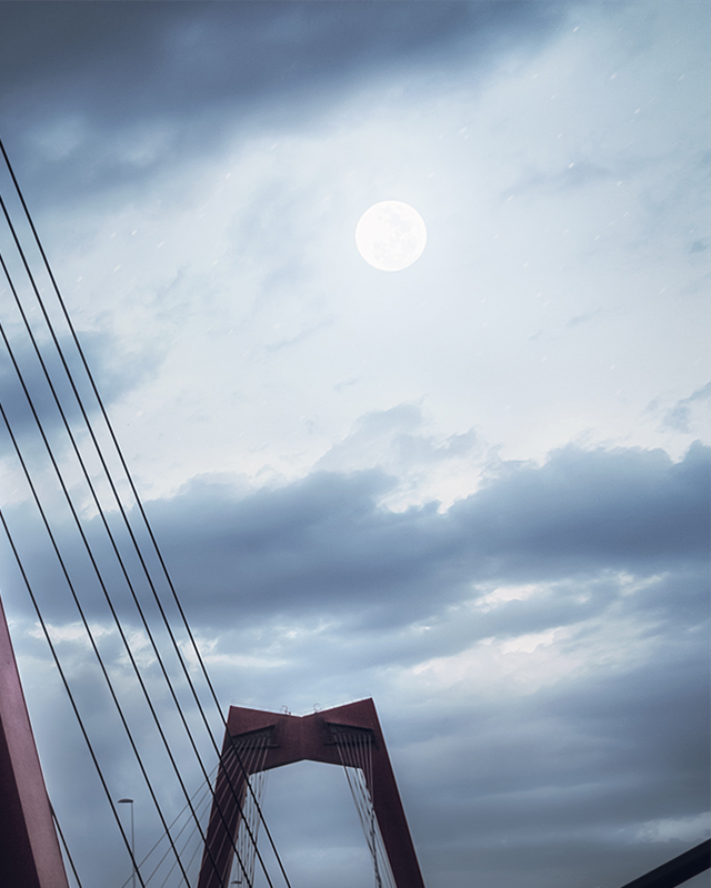 Rotterdam - Willemsbrug - Moonlight - Zoom